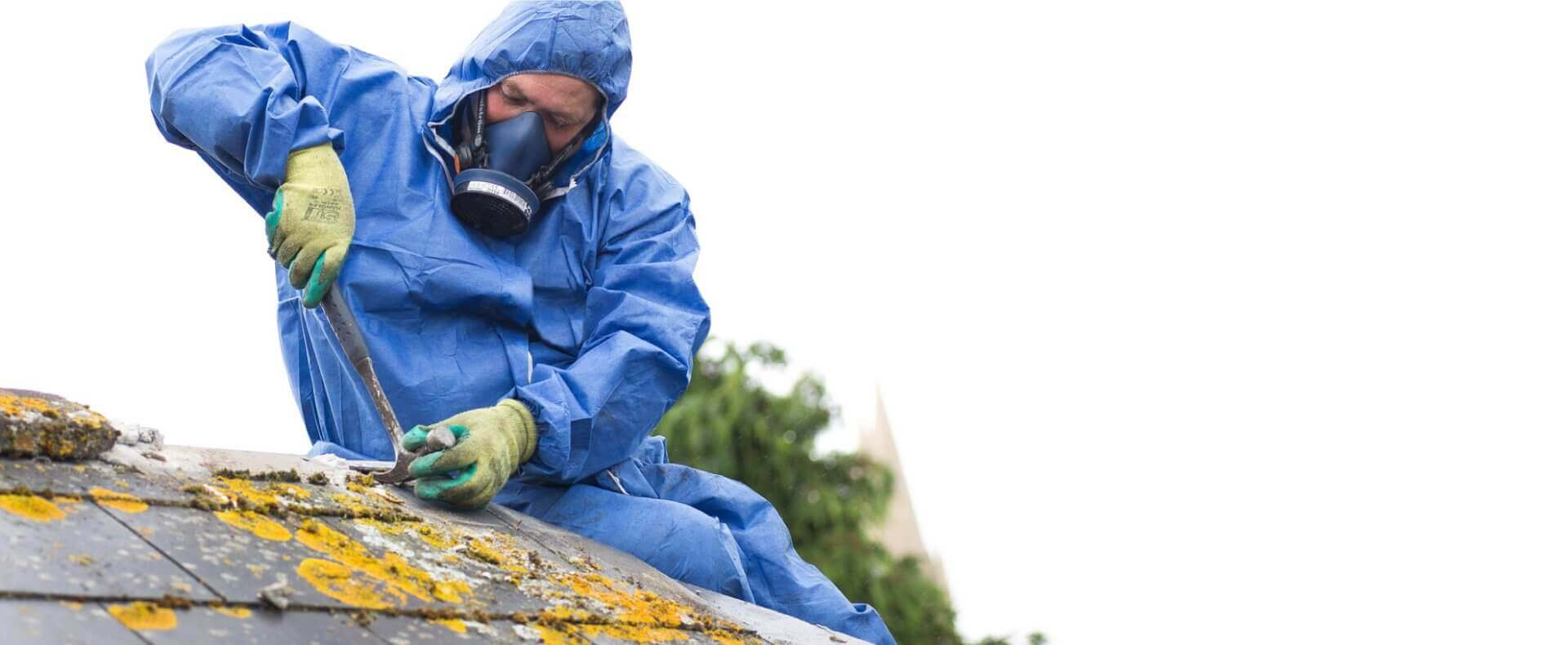 Asbestos Removal Specialists